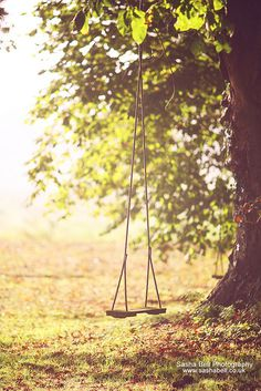 A swing out back.