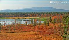 The northernmost part of the Pallas-Yllästunturi National Park, Pyhäkero Fell in Enontekiö.  Kuva / Photo: Juha Kalaoja
