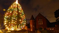 Annual Christmas Tree - early Dec. to early Jan ... in front of Friends Meeting House above Bournville Green christmastree2.jpg (600×342)