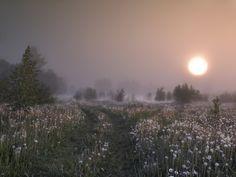 http://img-6.photosight.ru/564/4174211_large.jpg
