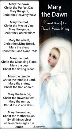 Our Morning Offering - 21 November - Mary the Dawn Morning Psalter Memorial of the Presentation of the Blessed Virgin Mary Mary the dawn, Christ the Perfect Day. Mary the gate, Christ the Heavenly Way! Mary the root, Christ the Mystic Vine. Divine Mother, Blessed Mother Mary, Blessed Virgin Mary, Prayers To Mary, Catholic Prayers, Church Prayers, World Day Of Prayer, Mama Mary, Strong Faith