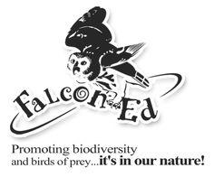 Bird of prey phylogenetic tree