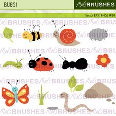 A set of cute bug illustrations for the garden!