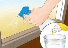 Last van mieren? DIT handige trucje lost dit probleem direct op! - Pagina 2 van 2 - TrendBuzz