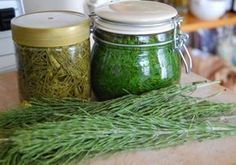 , is truly a wonder from another age. The Equisetum family are known as a 'living fossils' as they are the only living examples of the Equisetopsida class which… Natural Treatments, Natural Cures, Natural Health, Natural Medicine, Herbal Medicine, Holistic Nutrition, Health And Wellness, Herbal Remedies, Home Remedies