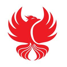 Probably the most popular and admired mythical bird in the world, the Phoenix, could be the perfect choice for your company or business logo. Vector Graphics, Vector Art, Mythical Birds, Phoenix Design, Bird Logos, Portfolio Logo, Logo Design, Graphic Design, Pablo Picasso