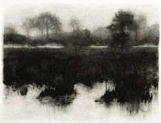 Elaine Green Swamp Grass, 2008 charcoal on paper 19 x 26 inches Landscape Drawings, Landscape Art, Landscape Paintings, Black And White Landscape, Black White Art, Charcoal Sketch, Charcoal Drawing, Scary Drawings, Pencil Drawings