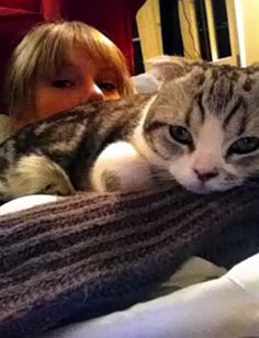 taylor with her kitty, Merdith. She's in good company :^)
