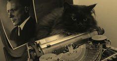 Rękopisy nie płoną