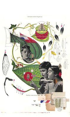 Editorial illustrations 2011-12 on Behance