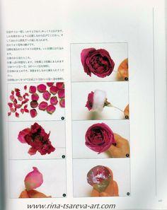 Книга Я. Руи (с красными розами на обложке) - rina-tsareva-art.com