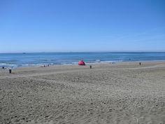 early morning, Ca' Savio beach