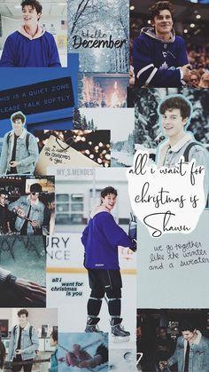 Shawn Mendes Cute, Shawn Mendes Memes, Shawn Mendes Imagines, Shawn Mendes Lockscreen, Shawn Mendes Wallpaper, Cute Backgrounds, Cute Wallpapers, Seinfeld, Liam Payne