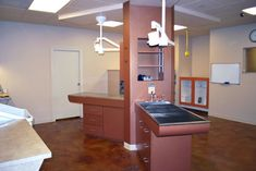 This treatment area features an exam table and a shallow tub table with grating for wet procedures - dvm360