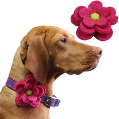 Felt Flower Dog Collar Accessories