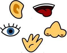 Image sur les 5  sens chansons comptines et poésies sur les 5 sens