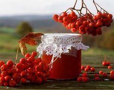Рябиновое настроение красной амурской рябины – полезное настроение - Мое Настроение - социальная сеть для тех кому хорошо
