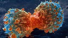 cancer: CANCER