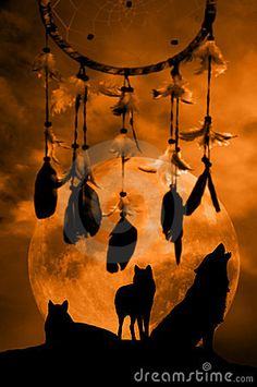 Dream Catcher/Wolves