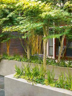Like the planter color/texture  Scott Lewis Landscape Architecture - Townhouse Garden - SLLA - San Francisco