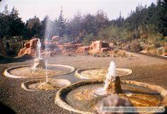 GORILLAS DON'T BLOG: Nature's Wonderland, January 1965