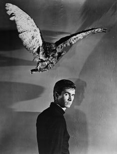 Anthony Perkins as Norman Bates in Alfred Hitchcock's 1960 film Psycho.