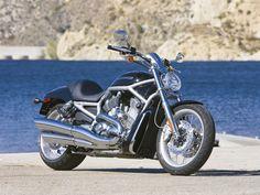 Free Harley-Davidson VRSCAW V-Rod motorcycle wallpaper with 1024 x 768 resolution Harley Davidson V Rod, Harley Davidson Motorcycles, Digital Story, Motorcycle Wallpaper, Old Motorcycles, Custom Harleys, Hot Wheels, Dream Cars, Pictures