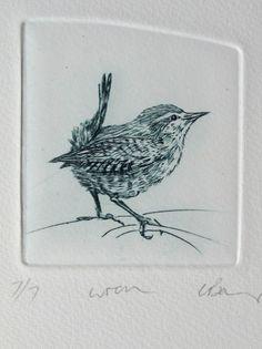 Drypoint Wren Tiny bird by Lynn Bailey Drypoint Etching, Etching Prints, Collagraph, Tiny Bird, Bird Drawings, Images Google, Bird Prints, Bird Art, Printmaking