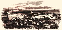 View of Newcastle, Hunter's River, N.S.W. from the Obelisk, Looking North 1853