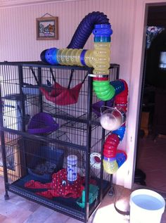 Looking for a new ferret cage? Read our guide on the best ferret cage if you don't want to lose your money on a poorly made cage. Chinchillas, Ferrets Care, Cute Ferrets, Ferret Toys, Pet Ferret, Rat Toys, Sugar Glider Cage, Sugar Glider Toys, Sugar Gliders