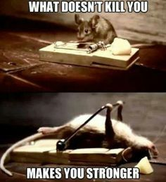 What doesn't kill you makes you stronger. funny, humor, quotes #fastsimplefit Get Free Fitness and Weight Loss News and Tips by Liking Us on: www.facebook.com/FastSimpleFitness