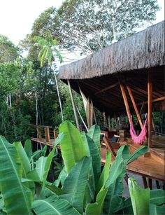 Amazing tropical home in bali built in the forest. home shwe Tropical Style, Tropical Vibes, Tropical Decor, Surf Shack, Beach Shack, Jungle Life, Tropical Architecture, Beach Bungalows, Tropical Landscaping