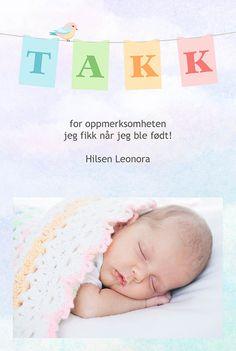 http://eurofoto.no/produkter/kort-og-skrivesaker/