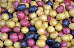 Colorful nugget potatoes