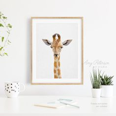 Giraffe Print Safari Giraffe Art Print Giraffe Wall Art   Etsy
