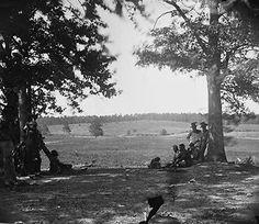 Cedar Mountain Virginia Battlefield New 8x10 US American Civil War Photo