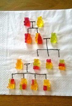 genetica-esempio