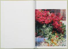 vjeranski   In Our Nature. Photographs by Takashi Homma via