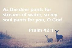 Psalms 42, christian tumblr, worship, Bible verses, Bible tumblr, Jesus, God, religion, Salvation, Love, Love of God.