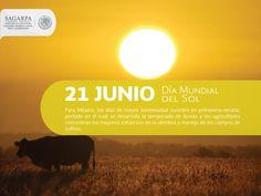 Día mundial del sol. SAGARPA SAGARPAMX