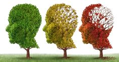 schützt #schlaf vor #demenz ?