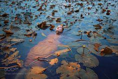 Float by ameliesatzger