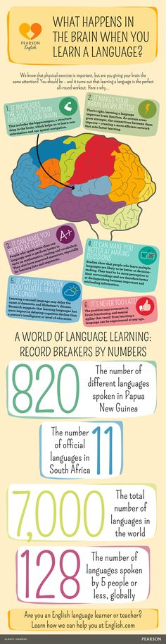 In this infographic, see why when you learn a language it's the perfect all-round workout for your brain. World Languages, Love Languages, Brain Based Learning, Classroom Images, True Vine, Learning A Second Language, Craft Quotes, Medical Field, Wedding Dj