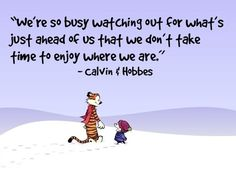 calvin-hobbes-quote-life-good-sayings-pictures-pics-e1446040516201.jpg (500×377)