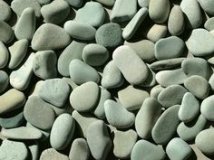 """Not sure that'd she go on rocks like these but I think they look nice and would be a nice feature in the dog area somewhere/how if we wanted. """"How to Build a Backyard Dog Potty Area"""" Outdoor Dog Area, Backyard Dog Area, Backyard House, Outdoor Retreat, Outdoor Spaces, Outdoor Decor, Pea Gravel Patio, Petit Basset Griffon Vendeen, Dog Toilet"""