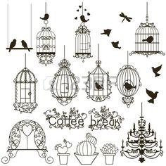Vintage birds and birdcages collection Isolated on white Clipart Vector  Stock Vector