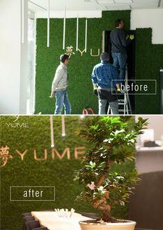 Mech Moss Trend dostępny w BandIt Design. #moss #mech #chrobotek #aranzacja #zielonesciany #aranzacjawnetrz #before #after #beforeandafter #przed #po #restauracja