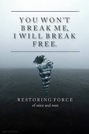 possibly one of my favorite lyrics from the restoring force album