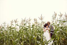Corn field. Moorpark, California. www.johnparkphoto.com
