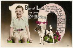 Dogs Fox Terrier with A Boy Cute Old Postcard | eBay